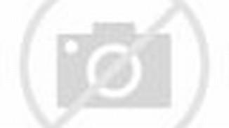 SEPEDA GUNUNG POLYGON MONARCH 3.0 GENT (2013 SERIES)