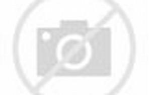 Nikita Mirzani Bingung AM Tidak Ditahan