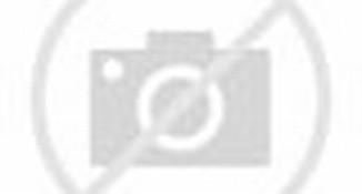 Ranjang Susun Kayu BB HK 4877 Hakari