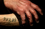 Auschwitz: Metal stamps used by the SS to tattoo prisoners ...