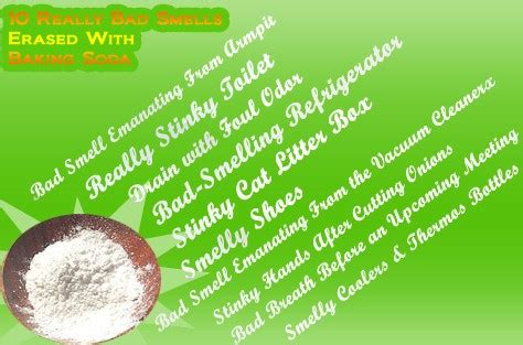10 Really Bad Smells Erased With Baking Soda Top 10 Home