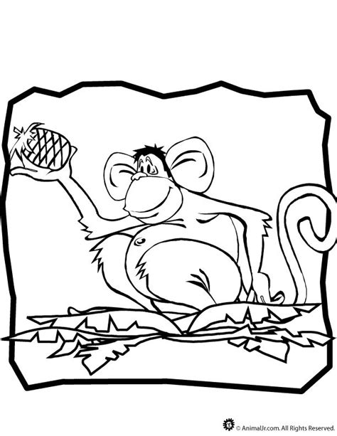 100 Animal Coloring Pages Woo Jr Kids Activities