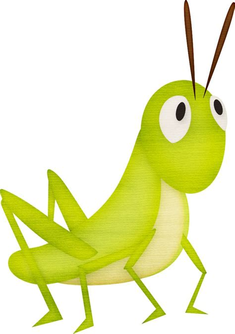 19 best drawing insects images on Pinterest Drawings