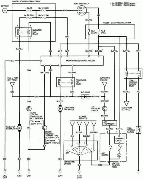 free download ebooks 1998 Accord Tail Light Wiring Diagram
