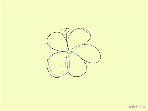 2 Easy Ways to Draw a Cartoon Hibiscus Flower wikiHow