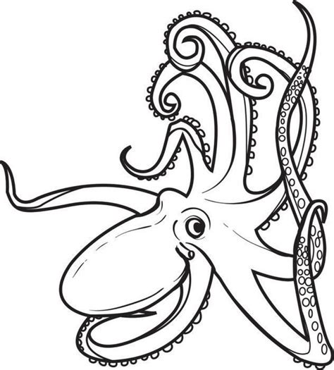 20 Free Printable Octopus Coloring Pages