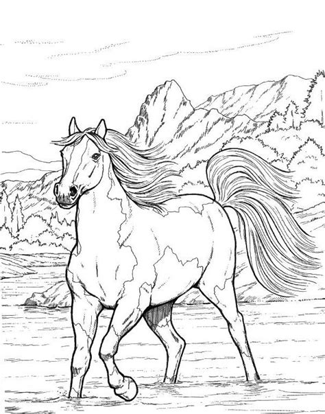 205 best Coloring Horses images on Pinterest Horse