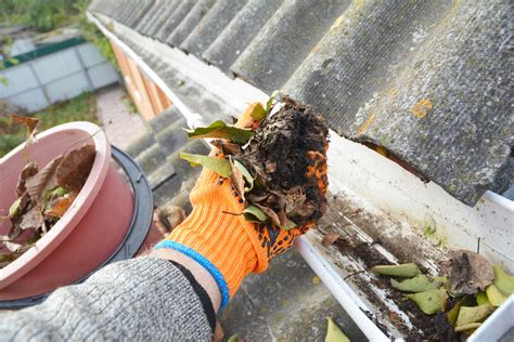 21 Best Gutter Cleaning and Repair Services Alexandria VA