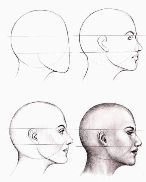 25 Anatomy Study Drawings by Veri Apriyatno Tutorial for