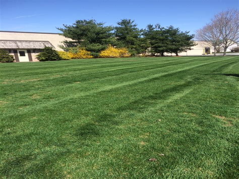 25 Best Landscaping Companies Lancaster PA Landscapers