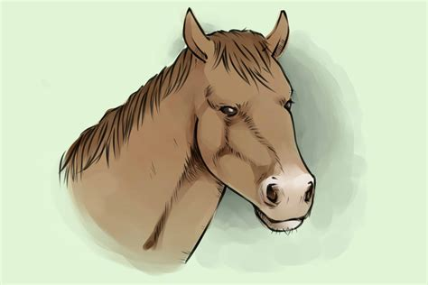4 Ways to Draw a Horse wikiHow