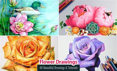 40 Beautiful Flower Drawings and Tutorial Videos Webneel
