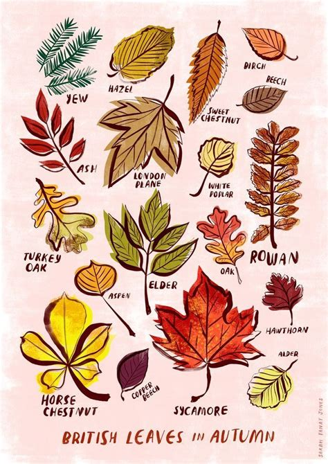 680 best Art with leaves images on Pinterest Fall Leaf