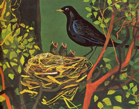 A Children s story about Bird Day The Magpie s Nest
