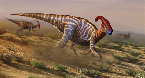 A Complete List of Every Dinosaur ThoughtCo