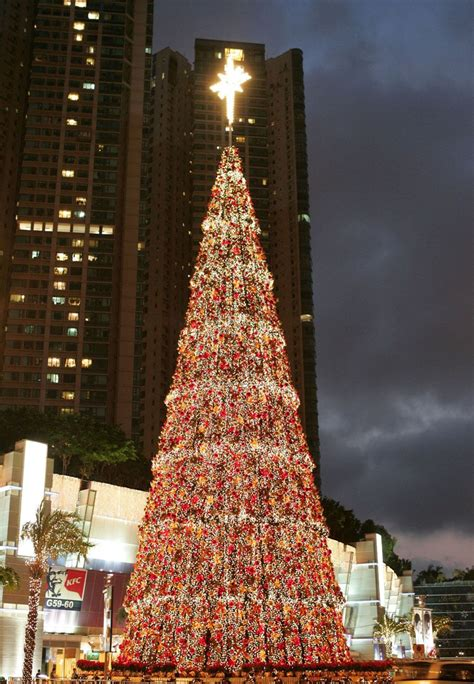 A Picture Of A Christmas Tree