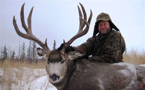 Alberta Mule Deer Hunting Trophy Mule Deer Hunts Alberta