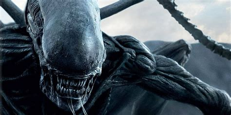 Alien Covenant Sequel is Not a Given Screen Rant