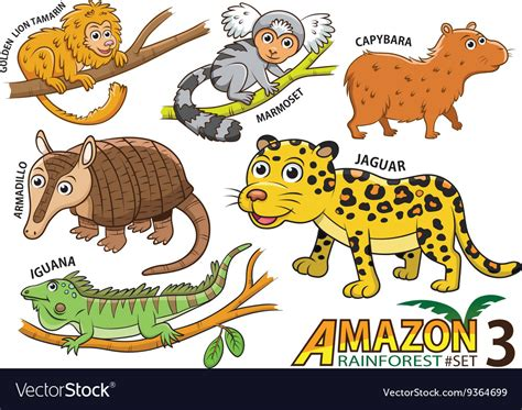 Amazon cartoon cute animals
