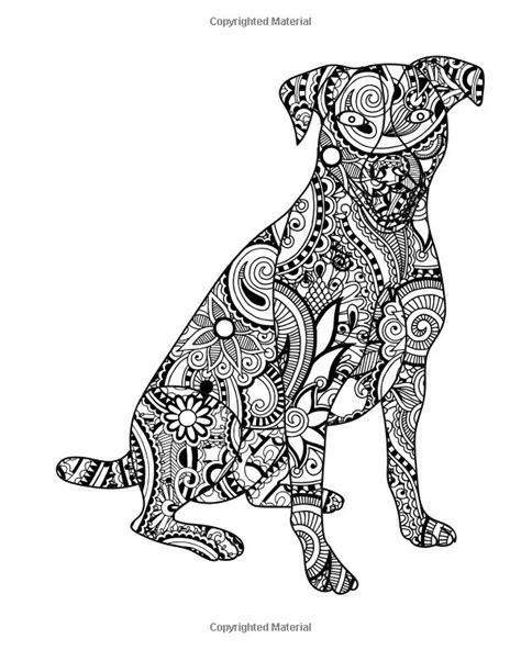 Amazon dog coloring book