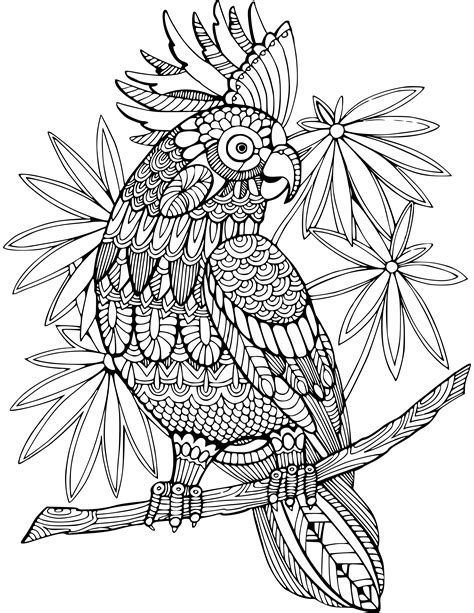 Animal Coloring Pages ColoringBookFun