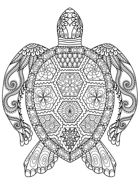 Animal Coloring Sheets