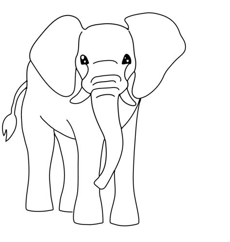 Animal Facts for Kids Animal Coloring Pages