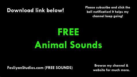 Animals Free Sound Effects