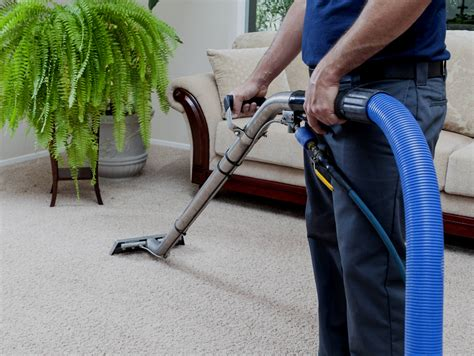 Apartments Carpet Cleaning and Care Generations Carpet