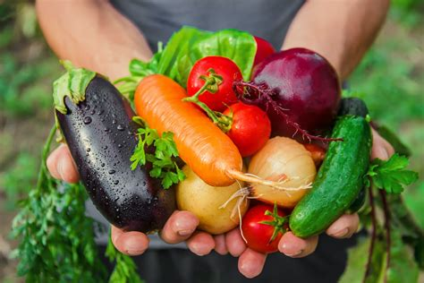 Are Organic Foods Right For You? Understanding The