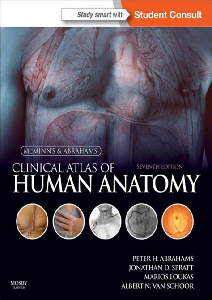 Atlas of human skeletal anatomy PDF 68P Download book