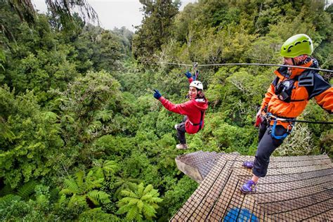 Attractions and Canopy Tour Rainforest Adventures See More