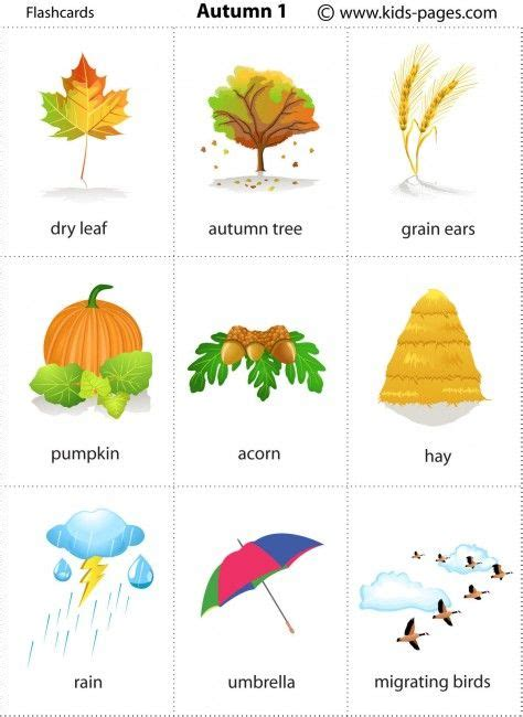Autumn 1 flashcard kids pages