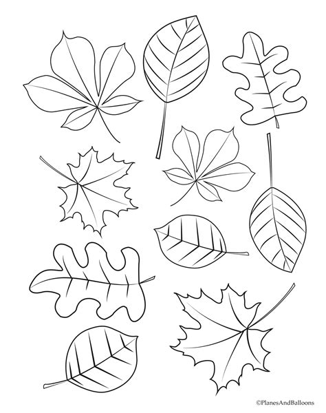 Autumn On Line Coloring Pages DLTK Kids