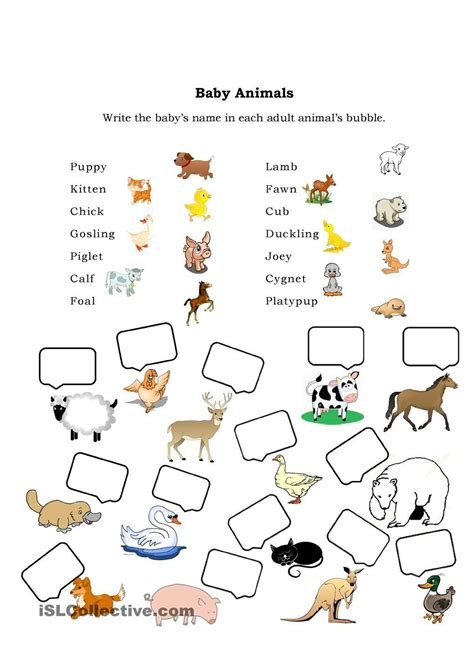 Baby Printables Activities for Kids