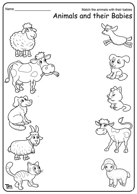 Baby Theme for Kids Colouring and Printables