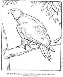 Bald eagle drawings and coloring pages Raising Our Kids