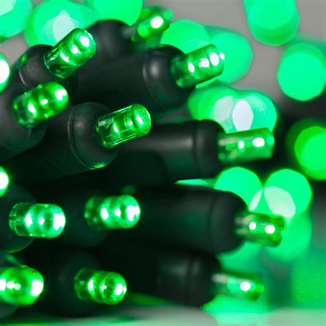 Battery Operated Net Christmas Lights