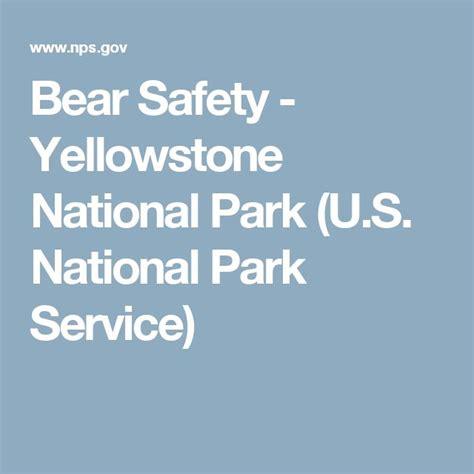 Bear Safety Yellowstone National Park U S National