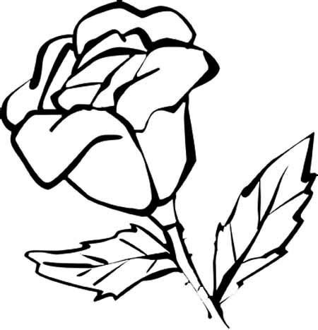 Beautiful Flower Coloring Pages With Delicate Forms of