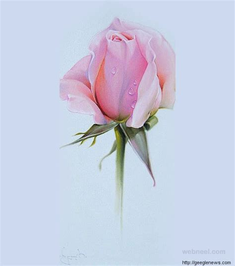 Beautiful Rose Pencil Drawings