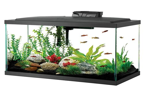 Best 20 gallon aquarium kit long high fish tank for sale