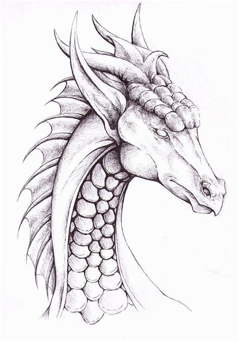Best 25 Easy to draw dragons ideas on Pinterest How to