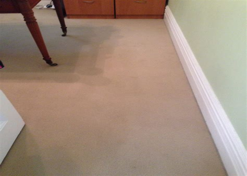 Best Carpet Cleaning service in Sydney Butler