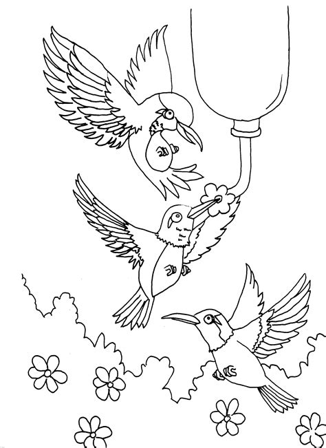 Bird Coloring Pages Free Coloring Pages for Kids