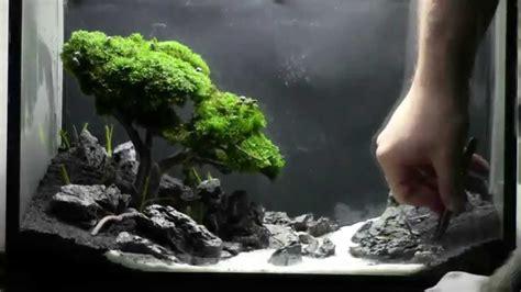 Bonsai Aquarium Acquario Bonsai Step by Step YouTube