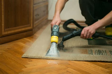 Bright and Fresh Professional Carpet Cleaning Company in