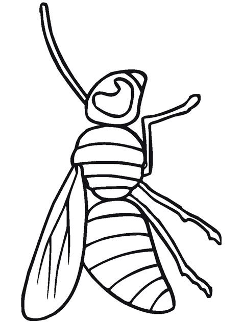 Bug Insect Coloring Pages PrimaryGames Free