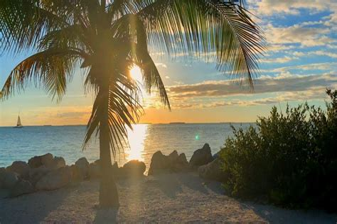 Car Draw St Raphaels Garda Credit Union
