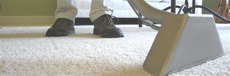 Carpet Cleaners in Newcastle Freedom Carpet Cleaning